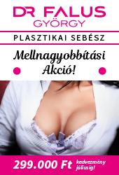 Testért Plasztika desktop 2.