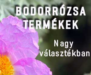 Bodorrózsa termékek