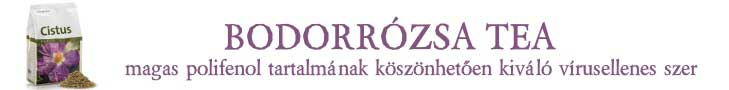 Sanct Bernhard Bodorrózsa tiszta tea